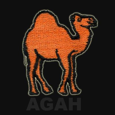 agah_camel